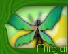 M * Alein Wings M