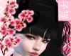 [T] Hanako black ~