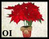*OI* Xmas Poinsettias