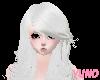 Silver White Beauty Hair