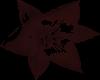 fractal of dark tulip(m)