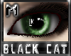 *.:.* BlackCat's Boutique UPDATED New Innocent Skin Set!! (3/18/10) *.:.* - Page 3 Images_3a893d0d28b3ea4158b2d0e4c585e4c4