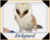 B♦ Cute Barn Owl