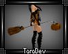 Halloween Broom Witch