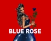 BLUE ROSE+song