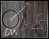 .CW.LostLake-Bike