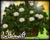 *LL* Flower Basket enh
