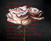 love sonnet