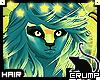 [C] Starbeez V.5 Hair