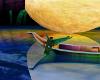 MoonShine Fantasy Cove