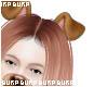 ♥ Snapchat Puppy Ears
