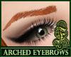 Arched Eyebrows Auburn