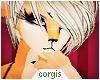 c; Aurora Hair
