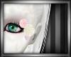 June Bride - Eye Roses