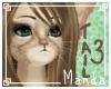 .M. Shadi Tail :V3