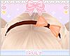 ・゚✧ Fall Bow