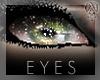 HLS|Wonder|Eyes 10