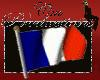 Anim.French Flag sticker