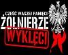 Polska Walczaca 1