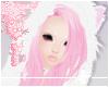 × Husky Pinku.