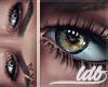 LVB| Sacred. Side Eye R