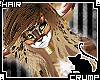 [C] Kittin V.2 Hair
