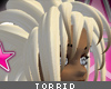 [V4NY] Torrid Bleched
