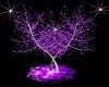 arbol purple