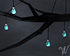 Indie Branch Lights