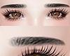 眉毛. Eyebrow Black.