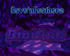 Cave 'n Feathers