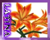 [ML]Hawaiian Lily Bush