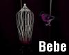 Bird Cage Animated