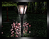 :P: SOLITUDE LAMP ANIM