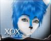 .xpx. Night Furry Bundle