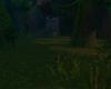 Otherworldly Woods