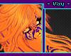○Congo Hairs 5.1