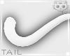 Tail White 19a Ⓚ