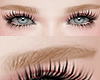 眉毛. Eyebrows Blonde.