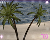 [CCQ]SB Palm Trees Deco