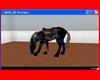 Animated Indian Pony 3