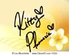 K| Plumeria Bangs