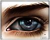 Roy's Eyes