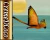 CDC-MesoAmer-Bird Gold