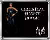 Celestial Night Mage