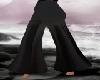 Flare / Pants