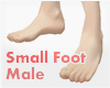 *Small Foot Male