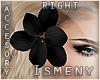 [Is] Flower Black -R-