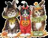 Halloween Kittens 5
