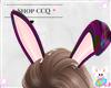 [CCQ]Bunny Ears-Eggies